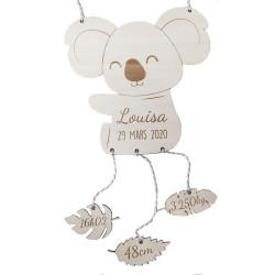 Koala naissance